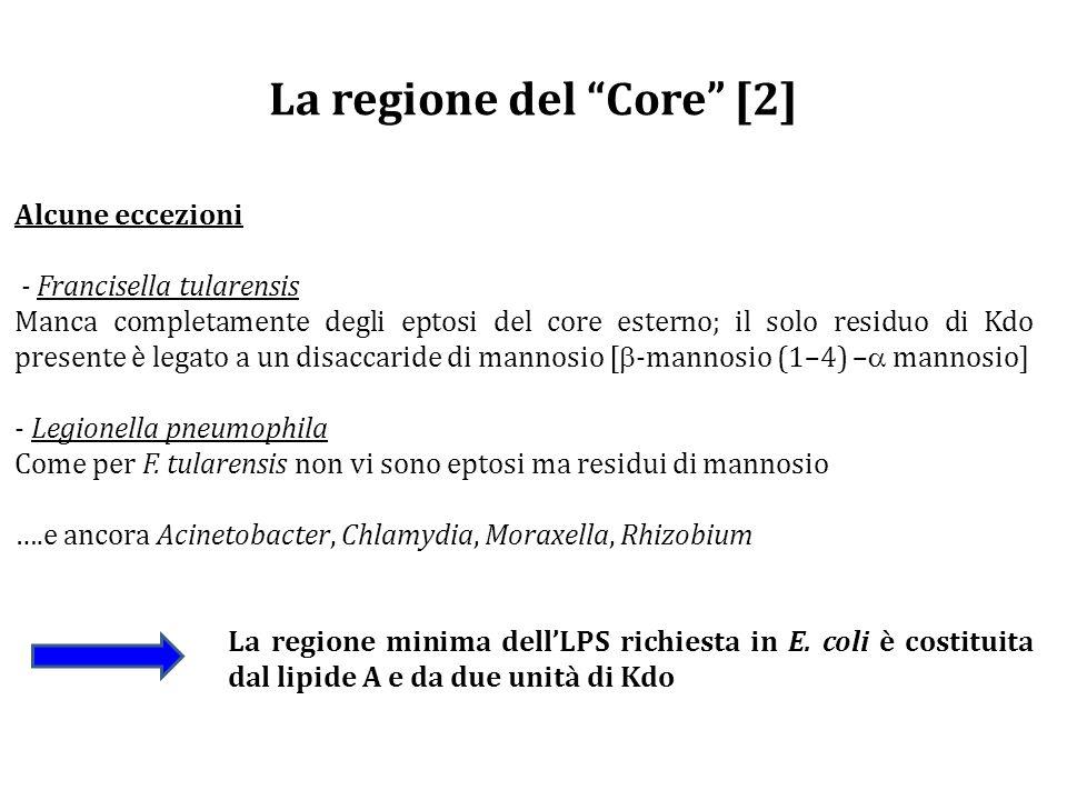 La regione del Core [2]